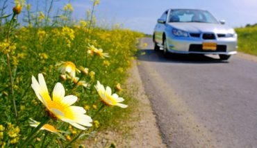 It's Springtime Car Care Time | Wichita Auto Care