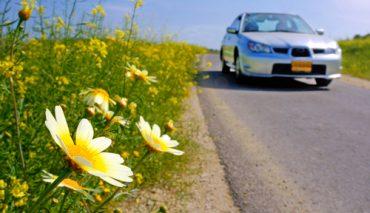 It's Springtime Car Care Time | Wichita Auto Care