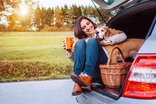 Falling Temperatures Mean It's Time for Auto Care | Wichita Auto Care